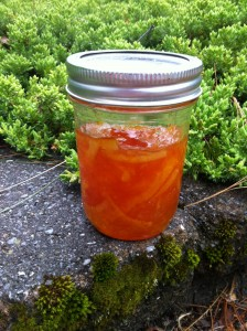 A lovely jar of marmalade
