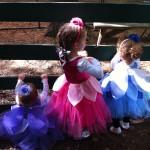 Aunie's fairies